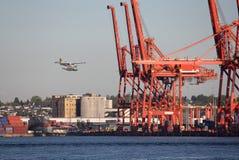 θάλασσα Βανκούβερ λιμε&nu Στοκ Εικόνες