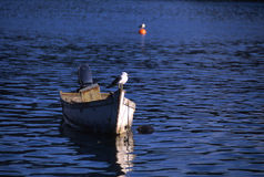 θάλασσα βαρκών Στοκ εικόνα με δικαίωμα ελεύθερης χρήσης