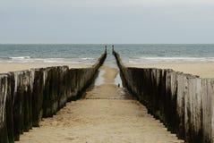 θάλασσα διακοπτών ξύλινη Στοκ Εικόνες