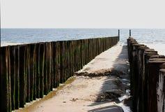 θάλασσα διακοπτών ξύλινη Στοκ Εικόνα
