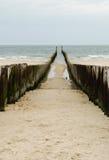 θάλασσα διακοπτών ξύλινη Στοκ φωτογραφία με δικαίωμα ελεύθερης χρήσης