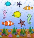θάλασσα ζώων Στοκ εικόνα με δικαίωμα ελεύθερης χρήσης