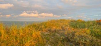 Θάλασσα κατά μήκος των αμμωδών αμμόλοφων λαμβάνοντας υπόψη την ανατολή Στοκ Εικόνες