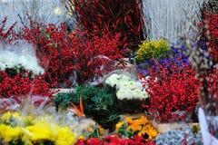 θάλασσα λουλουδιών Στοκ Εικόνες