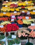 θάλασσα λουλουδιών Στοκ Φωτογραφία