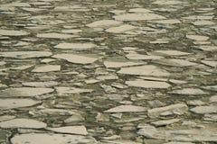 θάλασσα πάγου Στοκ Εικόνα