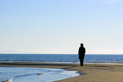 θάλασσα προσώπου Στοκ Εικόνες