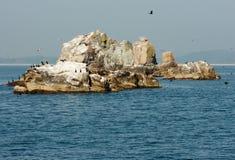 θάλασσα σκοπέλων Στοκ φωτογραφία με δικαίωμα ελεύθερης χρήσης