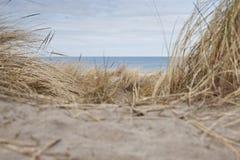 θάλασσα στην όψη Στοκ Εικόνες