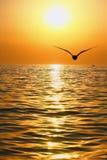 θάλασσα τοπίων Στοκ φωτογραφία με δικαίωμα ελεύθερης χρήσης