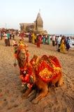 θάλασσα του Gujarat παραλιών Στοκ Εικόνα