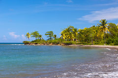 Θάλασσα τροπική ένα τοπίο σε μια ηλιόλουστη ημέρα. Τζαμάικα. Στοκ φωτογραφία με δικαίωμα ελεύθερης χρήσης