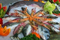 θάλασσα τροφίμων Στοκ Εικόνες