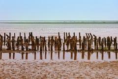 θάλασσα wadden της Δανίας στοκ φωτογραφία με δικαίωμα ελεύθερης χρήσης