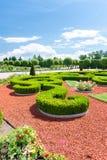 Θάμνοι πυξαριού του διακοσμητικού κήπου Βασιλικό πάρκο Λετονία Rundale στοκ εικόνες