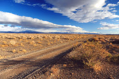 θάμνος κοντά στο δρόμο στοκ φωτογραφία με δικαίωμα ελεύθερης χρήσης
