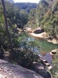 Θάμνος Aussie στοκ εικόνες