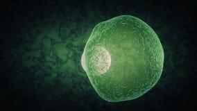 Θάνατος κυττάρων διανυσματική απεικόνιση