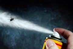Θάνατος μιας μύγας Στοκ εικόνες με δικαίωμα ελεύθερης χρήσης