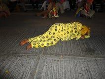 Θάνατος της τίγρης Στοκ Φωτογραφίες