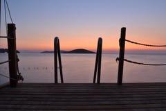 Θάλασσα δέντρων Στοκ φωτογραφία με δικαίωμα ελεύθερης χρήσης