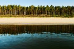 Θάλασσα, παραλία και αειθαλές κωνοφόρο δάσος δέντρων σκωτσέζικων πεύκων Στοκ Φωτογραφία