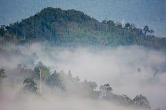 Θάλασσα σημείου άποψης ομίχλης Krungshing της ομίχλης Στοκ Φωτογραφία
