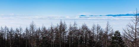 Θάλασσα σύννεφων στο βουνό του Φούτζι Στοκ Εικόνα