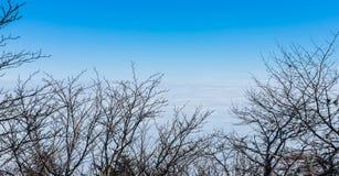 Θάλασσα σύννεφων στο βουνό του Φούτζι Στοκ Εικόνες