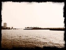 θάλασσα φοινικών Στοκ φωτογραφία με δικαίωμα ελεύθερης χρήσης