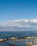 Θάλασσα Salton Στοκ εικόνες με δικαίωμα ελεύθερης χρήσης