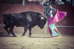 Θέαμα της ταυρομαχίας, όπου ένας ταύρος που παλεύει έναν ταυρομάχο S στοκ φωτογραφίες με δικαίωμα ελεύθερης χρήσης