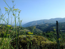 Θέα βουνού στην Κρήτη στοκ εικόνες