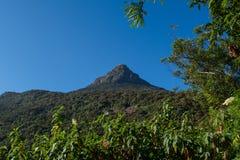 Θέα βουνού στη Σρι Λάνκα Στοκ Φωτογραφία