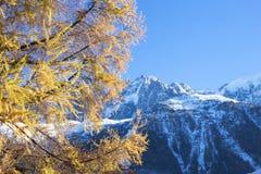 Θέα βουνού στις γαλλικές Άλπεις Στοκ Εικόνες