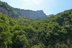 Θέα βουνού του φαραγγιού Tsey Δημοκρατία της Βόρειας Οσετίας - Alania, Ρωσία Στοκ φωτογραφία με δικαίωμα ελεύθερης χρήσης