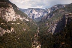 Θέα βουνού χλόης Yosemite Στοκ Φωτογραφίες
