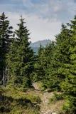Θέα βουνού Karkonosze Στοκ φωτογραφίες με δικαίωμα ελεύθερης χρήσης
