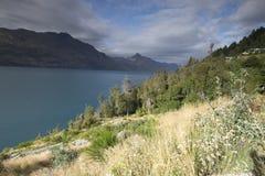 Θέες βουνού, ρεύματα και λίμνες της Νέας Ζηλανδίας δ Υ Στοκ Εικόνα