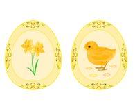 Θέμα αυγών Πάσχας daffodil και κοτόπουλο μωρών Στοκ Φωτογραφίες