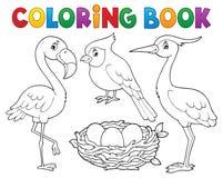 Θέμα 1 πουλιών βιβλίων χρωματισμού απεικόνιση αποθεμάτων