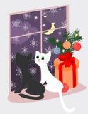 Θέμα Χριστουγέννων με τα γατάκια και το δώρο κοντά στο παράθυρο διανυσματική απεικόνιση