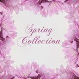 Θέμα Fahion συλλογής άνοιξη με τα λουλούδια Στοκ εικόνα με δικαίωμα ελεύθερης χρήσης