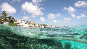 Θέρετρα και κοράλλι σε Bonaire απόθεμα βίντεο