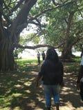 Θέρετρο Rusinga στοκ φωτογραφίες