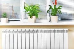 Θέρμανση του άσπρου θερμαντικού σώματος θερμαντικών σωμάτων με το λουλούδι και το παράθυρο Στοκ Φωτογραφία