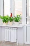 Θέρμανση του άσπρου θερμαντικού σώματος θερμαντικών σωμάτων με το λουλούδι και το παράθυρο Στοκ Φωτογραφίες