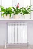 Θέρμανση του άσπρου θερμαντικού σώματος θερμαντικών σωμάτων με το λουλούδι και το παράθυρο Στοκ Εικόνα