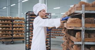 Θέση αρτοποιών γυναικών ελκυστική πολύ σε παραγγελία το φρέσκο ψημένο ψωμί αυτή που φορά μοντέρνο ομοιόμορφο για τον αρτοποιό φιλμ μικρού μήκους