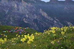 Θέση για κατασκήνωση στο βουνό στοκ φωτογραφία